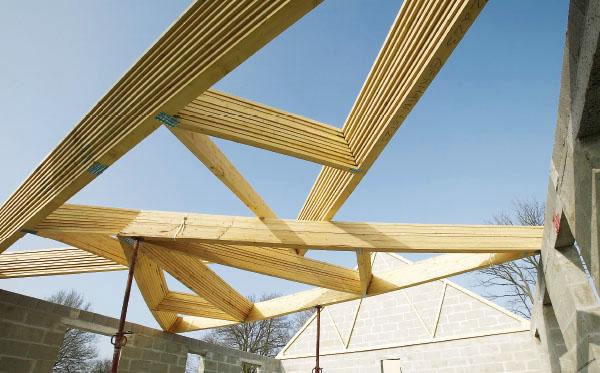 conception charpente bois pour maison individuelle. Black Bedroom Furniture Sets. Home Design Ideas